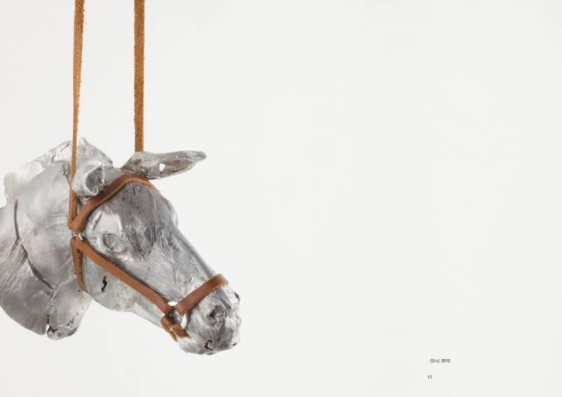 Juliane Noack - Pferd